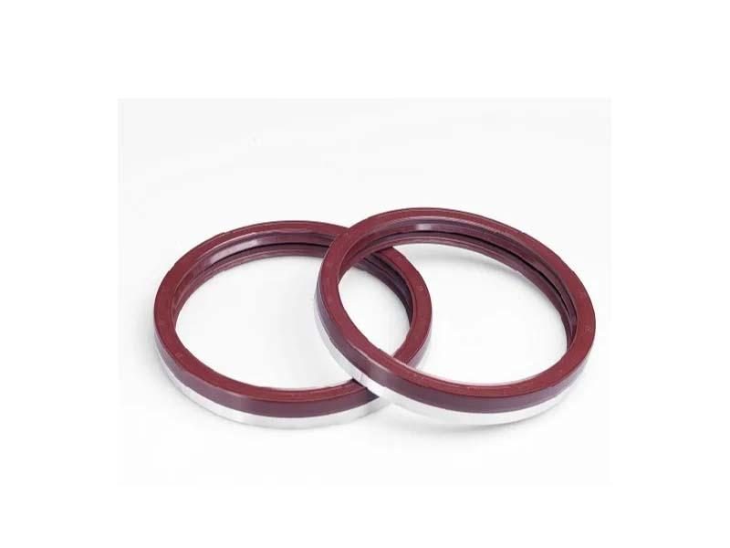 OEM High Pressure Oil Seal Customized Oil Seals