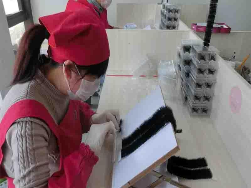 Qingdao Dellya Lashes Co., Ltd