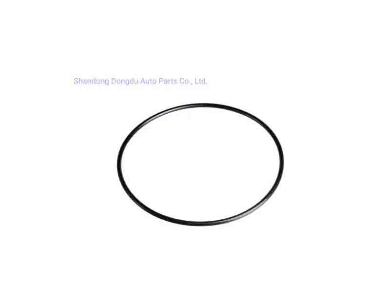 OEM Customize Wear-Resistance Seal Ring
