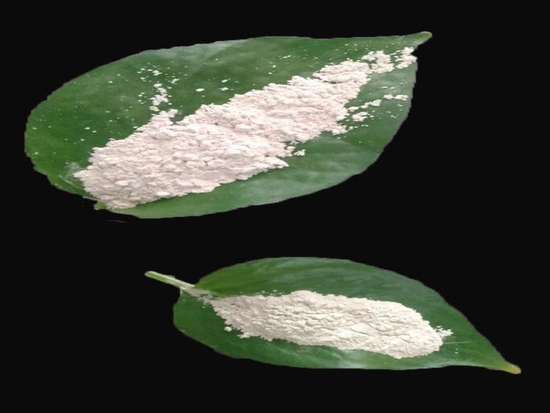 Magnesium Oxide Active MGO Powder 200 Mesh