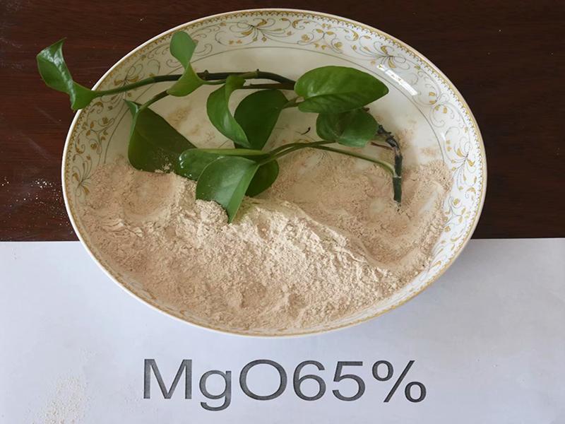 High Purity Magnesium Oxide Powder