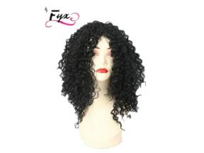 Fashionable 100% Virgin Brazilian Human Hair Frontal Lace Wig and Full Lace Wigs