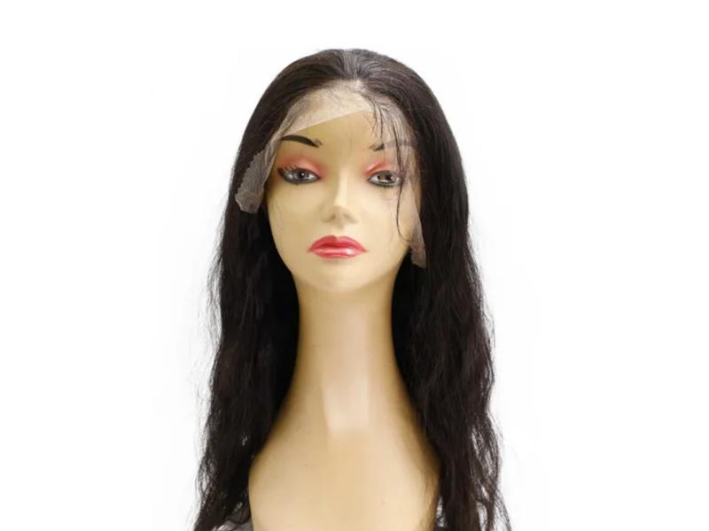 Fast Delivery Pre-Plucked Brazilian Hair Human Hair Wig Full Lace Wigs