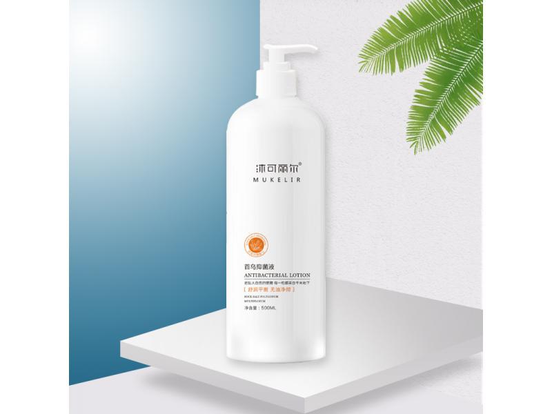 Manufacturers Plant Essence Formula Shampoo for Hair Loss with Rock Salt