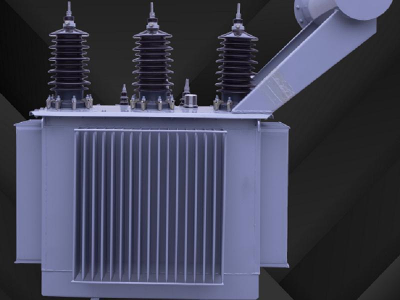 Conservator Transformer