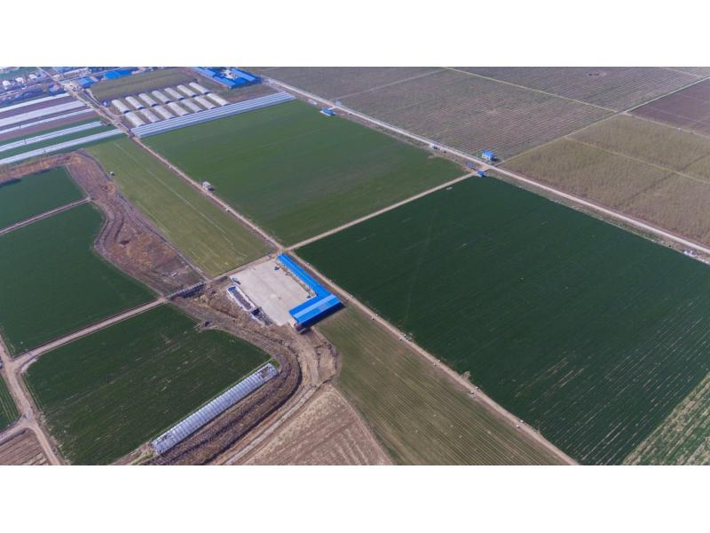 Shandong Kawo Eco-agriculture Co., Ltd.