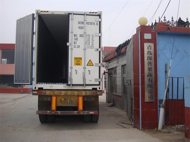 Qingdao Shenpu Fruit & Vegetable Co., Ltd