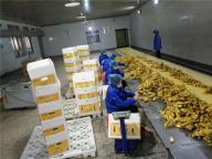 Qingdao Shenpu Fruit & Vegetable Co., Ltd